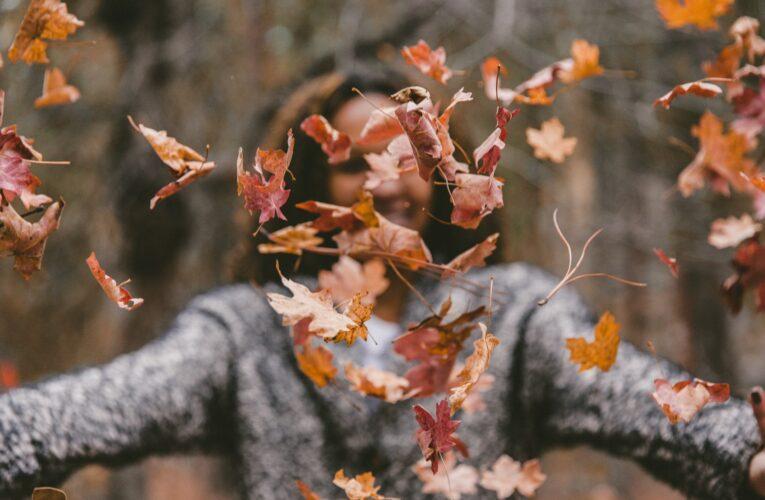 Ayurveda no outono