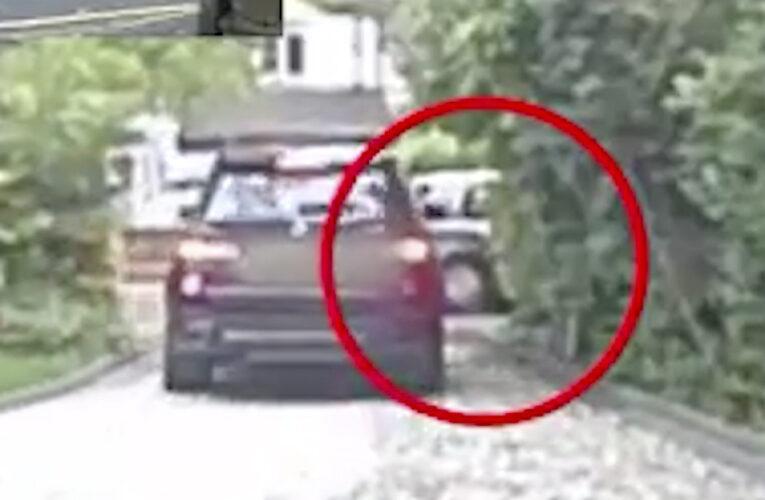 Uma gangue violenta de ladrões de carros foi filmada no Reino Unido
