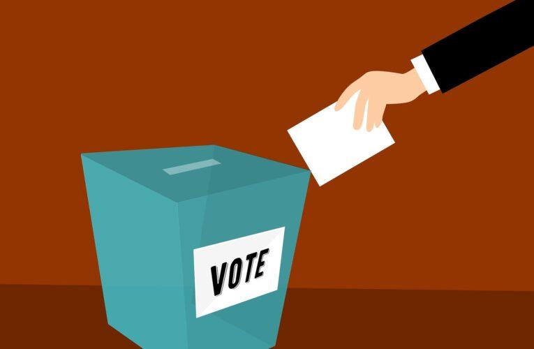 Portugueses em UK pedem voto postal nas eleições presidenciais de janeiro