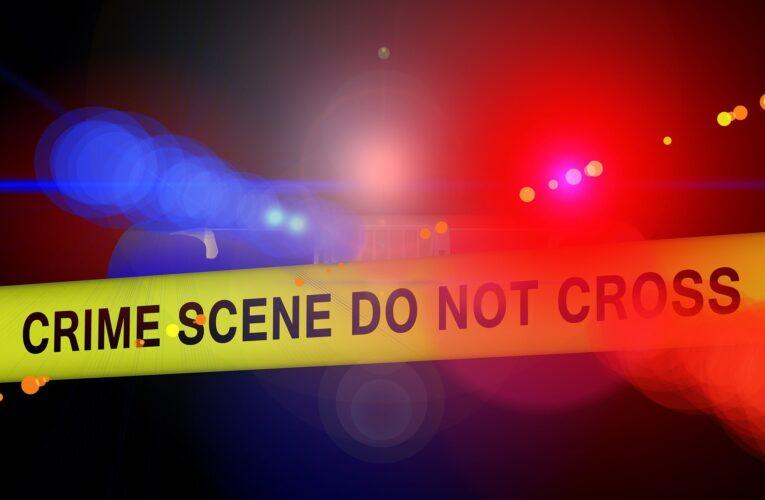 Polícia efetua duas prisões relacionadas ao esfaqueamento fatal de Sven Badzak, em Kilburn